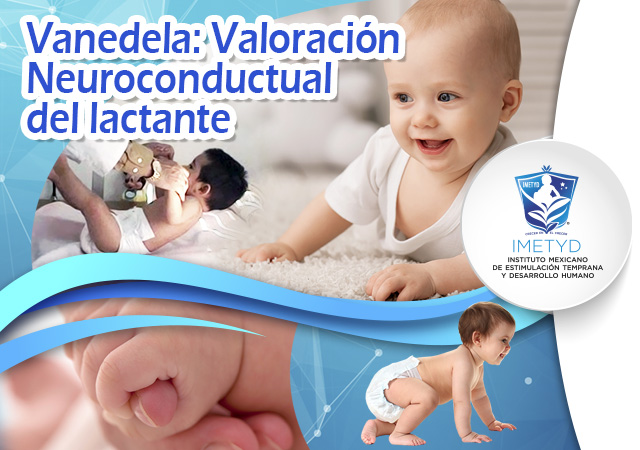 Course Image VANEDELA. Valoración Neuroconductual del Lactante
