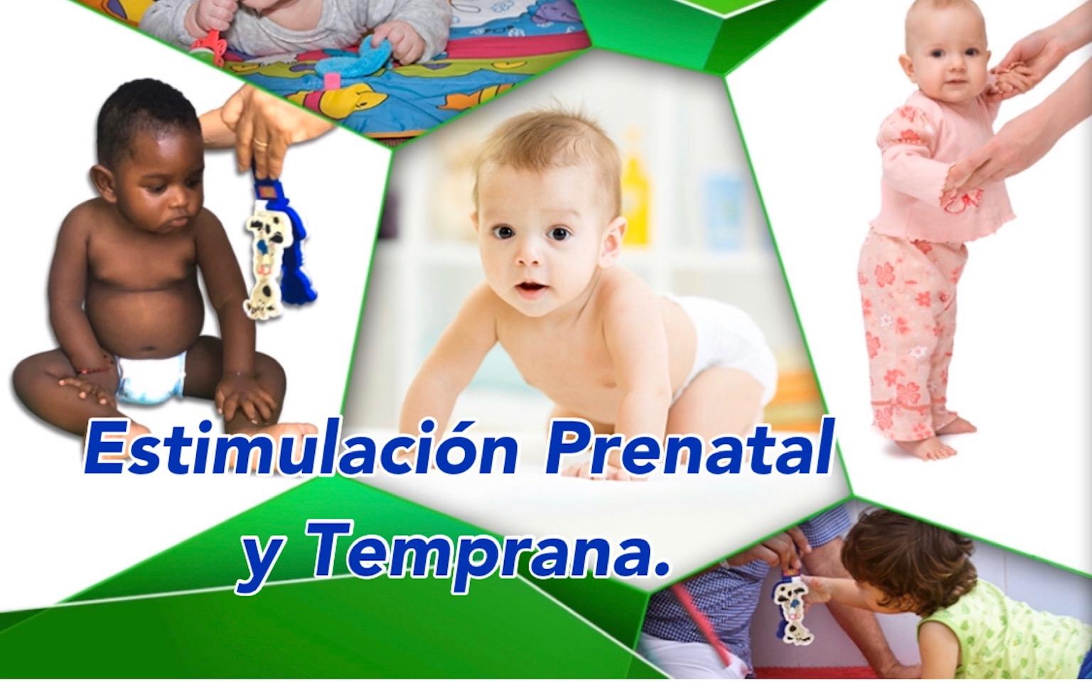 Course Image Módulo III. Estimulación prenatal y Temprana